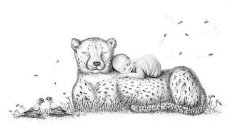 APPAs Rieter Cheetah